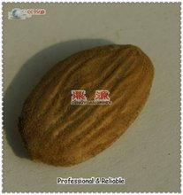China raw almonds