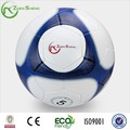 Zhensheng personalizado bolas esportivas