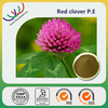 100% Natural and pure red clover extract with 8% ~40% Isoflavones /certificate by ISO9001 HACCP Kosher GMP