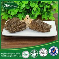 100% Natural Organic Dried Morel Mushrooms for Sale