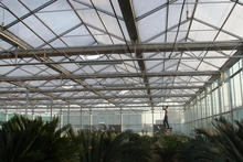 Agricultural glass greenhouse