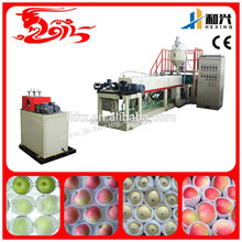 EPE foaming fruit net plastic machine(HX-EPEW75)