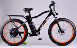 > 500w Wattage and Brushless Motor electric pit bike