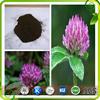 Red clover extract/Isoflavones 60%/Formononetin/Anti-spasm plant extract