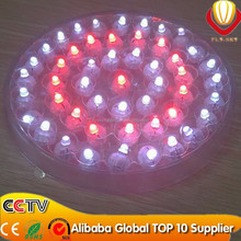 party & wedding decoration new innovation factory direct high quality lower price hot sale glow in the dark led balloon light
