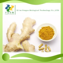 100% pure Ginger Extract Powder,water soluble Ginger Powder