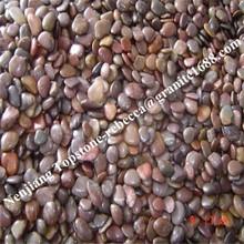 Pavimentación guijarros, pared guijarros, piso guijarros para paisaje decoración ( 3 - 120 mm )