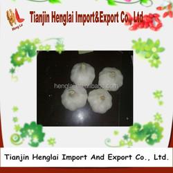 nature garlic import china garlic for sale 1