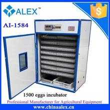 Best Seller incubator egg hen with high quality