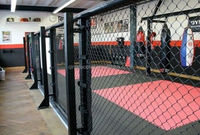 new styles ground floor mma cage in 4m size