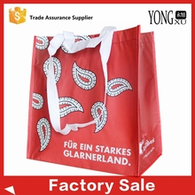 Full Printing PP Non Woven bag,recycled promotional non woven grocery shopping bags