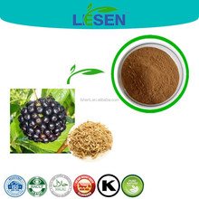 High quality Eleutherococcus Senticosus Extract / Siberian Ginseng Extract / Acanthopanax extract