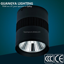 New product promotion commercial 30w led down light