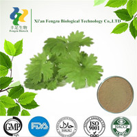 Caraway Extract Seed powder