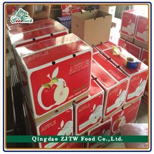 Chinese Factory Supply Apple Fresh Fruit