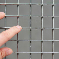 SS 304 small wire Welded Wire Mesh