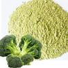 xi lan hua powder dried powder Broccoli powder
