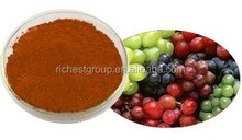 100% Natural Grape seed P.E.