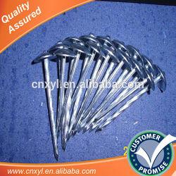 galvanized umbrella roofing nails