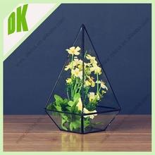 Creative high quality round square flower glass pot *** For Room Decoration eco-friendly antique mini flower pot plastic plates