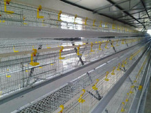 wire chicken galvanized/welded metal cages for birds and animal/black chicken wire mesh