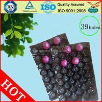Safety Food Grade Custom Design Plastic Fruit Packaging Tray
