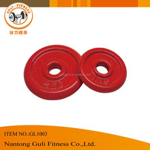 Color Epoxy Regular Weight Plate