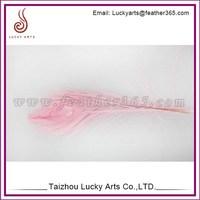 Lucky Arts manufacturer artificial bird feathers sale