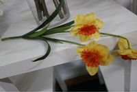 Market china Artificial daffodil flower for sale