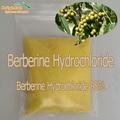 hcl berberina(berberine hcl)