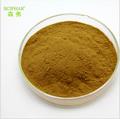 Mariendistel-extrakt Heilpflanze Mariendistel p. E./mariendistel-extrakt/silymarin 80%