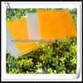 hoja hueco del policarbonato hoja de colores