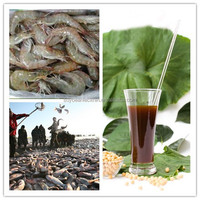 lecithin soya for poultry feed ingredients