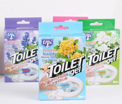 Franck Needle tube cleaning agent/toilet cleaner