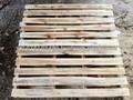 la exportación de madera paleta de tipo iii inventario en la acción
