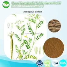 huang qi extract astragalus root extract cycloastragenol 98%