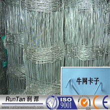 ISO9001 anping hot dipped galvanized goat and sheep fence (Since 1989)
