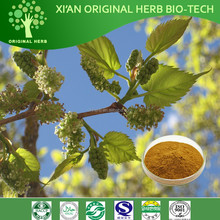 100% Pure Nature Mulberry Leaves Extract 1-Deoxynojirimycin 1% -20%