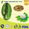 organic herbal extract products 98% Salicin White Willow Bark Extract Powder