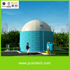 Chinese anaerobic reactor with PVC biogas storage bag on top