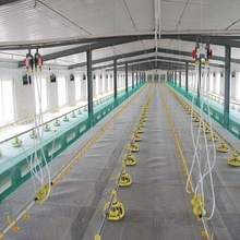Full set of Poultry Control Shed Equipment