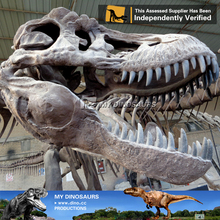 N-C-W-898- toy animal dinosaur skull replica