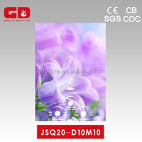 Good quality flower glass panel gas heater water/ zero water pressure valve gas geyser