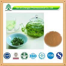 GMP Supplier 100% High Purity Green tea extract