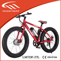 350w electric bicycle motor, brushless motor bike for sale, electric bike