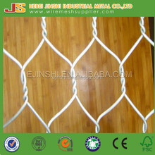 Double twist Hot dipped galvanized Hexagonal wire mesh for Japan market