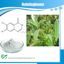 Professional manufacturer Pure Halofuginone In Herbal Extract