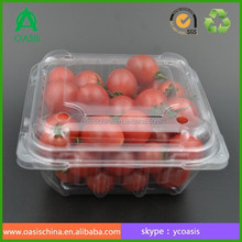 250g disposable plastic food container with lid and vents