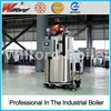 high quality best price hot water gas fired steam boiler
