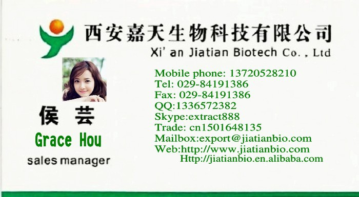 100% Natural Angelica Extract, Dong Quai Extract